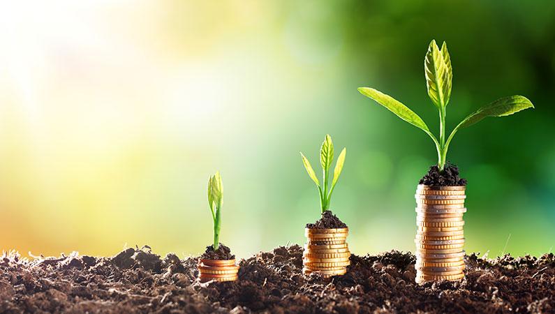 Penge i bæredygtighed